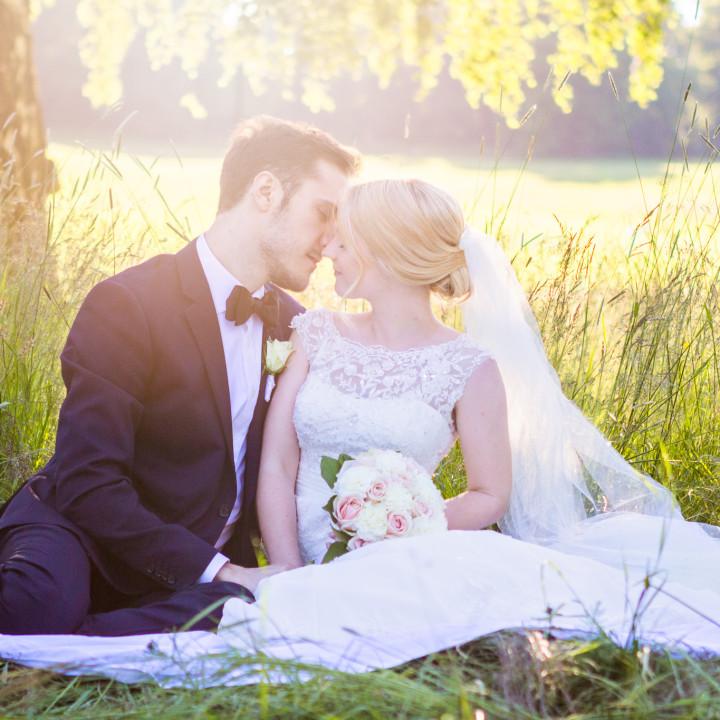 Brudpar i Hagaparken - Hanna o Jim